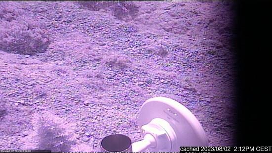Ehrwald webcam hoje à hora de almoço