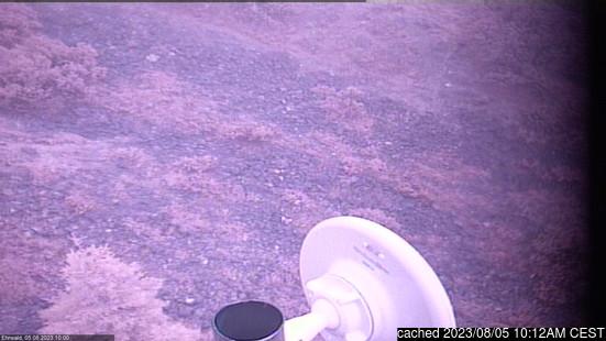 Live Webcam für Ehrwald