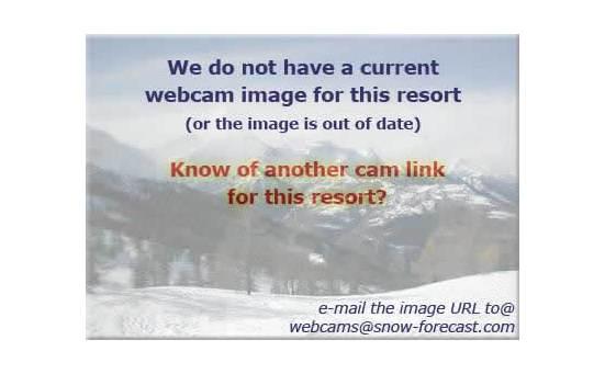 Golteの雪を表すウェブカメラのライブ映像
