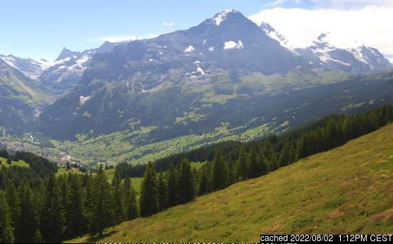 Grindelwald webcam at lunchtime today