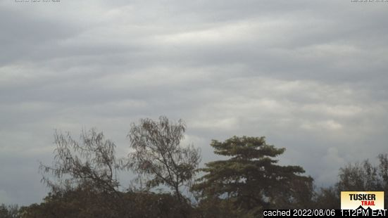 Live Snow webcam for Mount Kilimanjaro