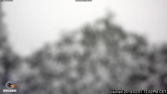 Nesbyen webbkamera vid kl 14.00 igår