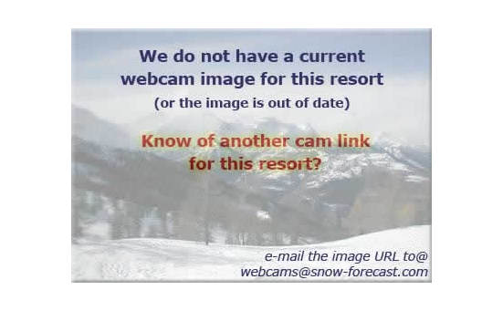 Powder Kingの雪を表すウェブカメラのライブ映像