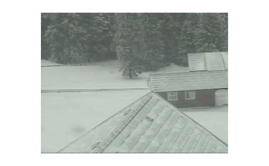 Rogla webcam at lunchtime today