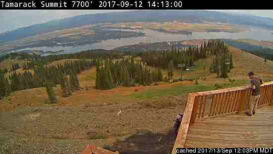 Tamarack webcam at lunchtime today
